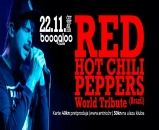 RED HOT CHILI PEPPERS by ORGANI'C, 22.11.2018., Boogaloo, Zagreb
